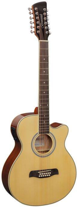 Acoustic Guitar 12 String